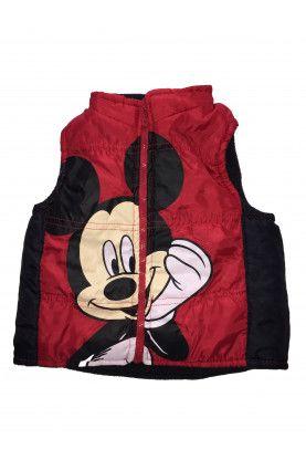 Vest Disney