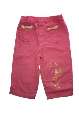 Shorts Koala Kids