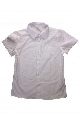 Shirt NUTMEG