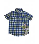 Риза Disney