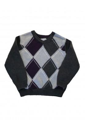 Sweater Greendog
