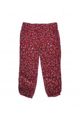 Pants Genuine kids