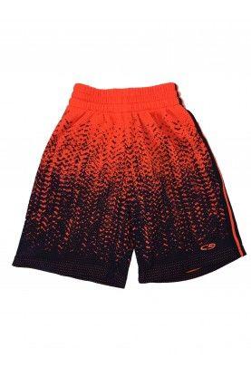 Shorts Champion